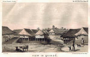 View In Quibdó (Quibdo) Columbia Village Straw Houses Cows 1854 Litho Print