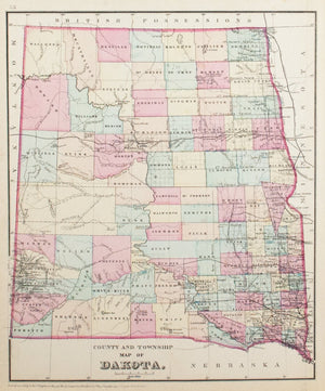 1881 County and Township Map of Dakota - S Mitchell Jr