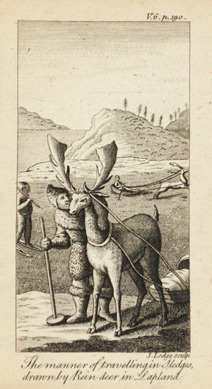 1774 Tvravelling in Sledges drawn by Reindeer in Lapland - J Lodge