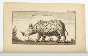 1774 The Rhinoceros - Hulett