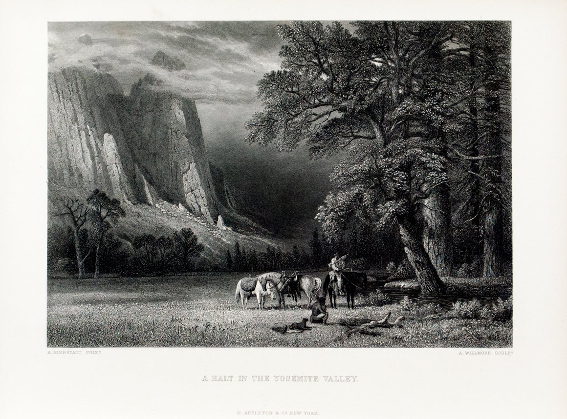 1875 A Halt in the Yosemite Valley - Webster