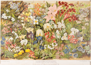 1893 Rockery Plants and How to Grow Them - John Allen