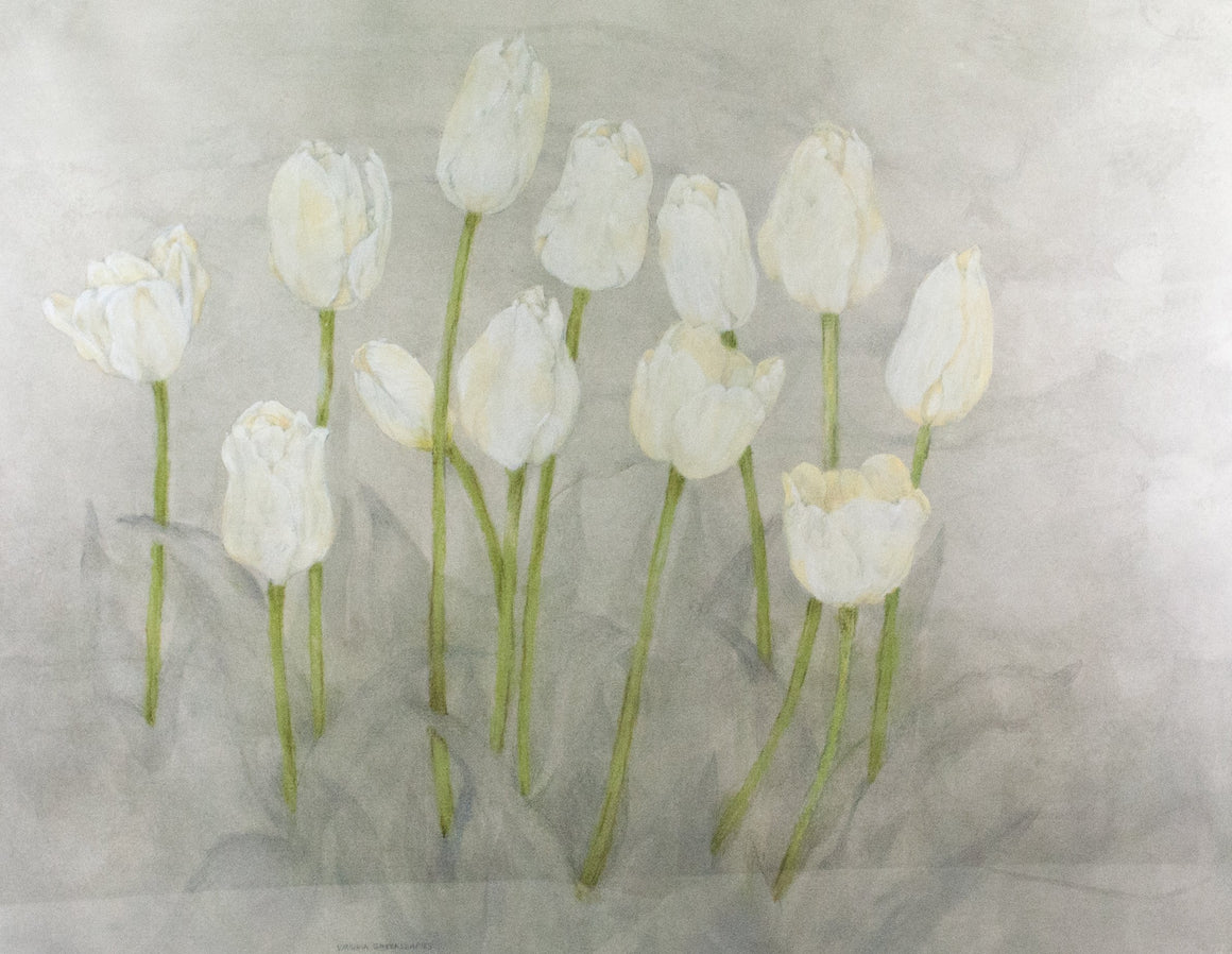 Virginia Greenleaf - White Tulips - Painting - 1985