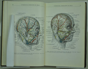 Manual of Surgical Anatomy US Army Medical Dept 1918