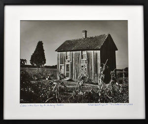 A Aubrey Bodine - Cabin in the Corn (Caroline County) - Photograph - 1953