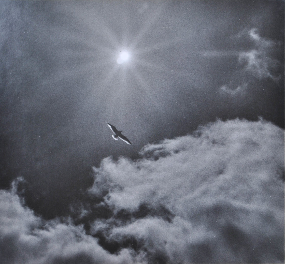 1969 Flight Photo by Joseph Buemy [Buemi] Signed Freedom and Sun