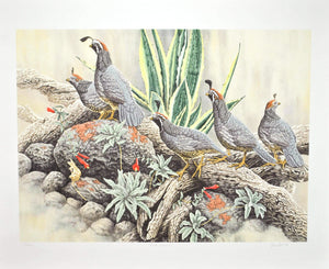 Chris Forrest - Birds Rocky Crossing - Signed Limited 51/300 Lithograph