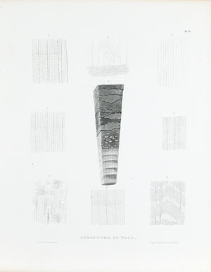 1849 Pl 14 Wood Structure - Emmons