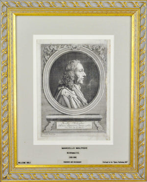 Marcello Malpighi (1628-1694) Antique Doctor Print 1697