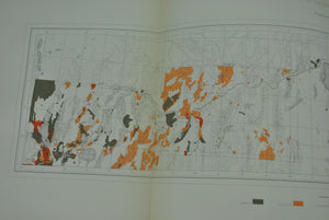 1870 Analytical Geological Map VII