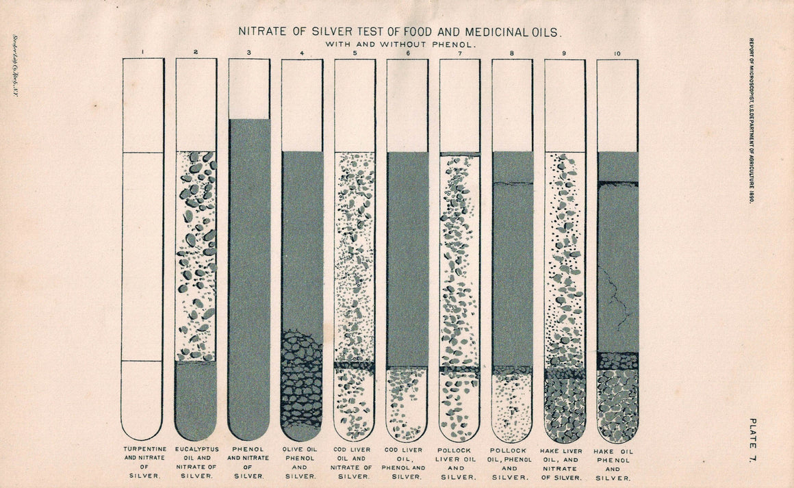 Silver Nitrate Test Tube Olive Pollock Oil Antique Science Print 1890