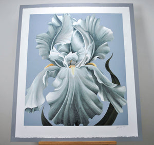 1982 Award Winning Orchid Print by John Zak Signed and Numbered 32x37in