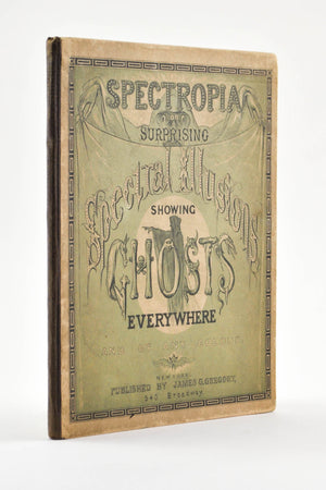Spectropia Showing Ghosts Everywhere by James G. Gregory 1864