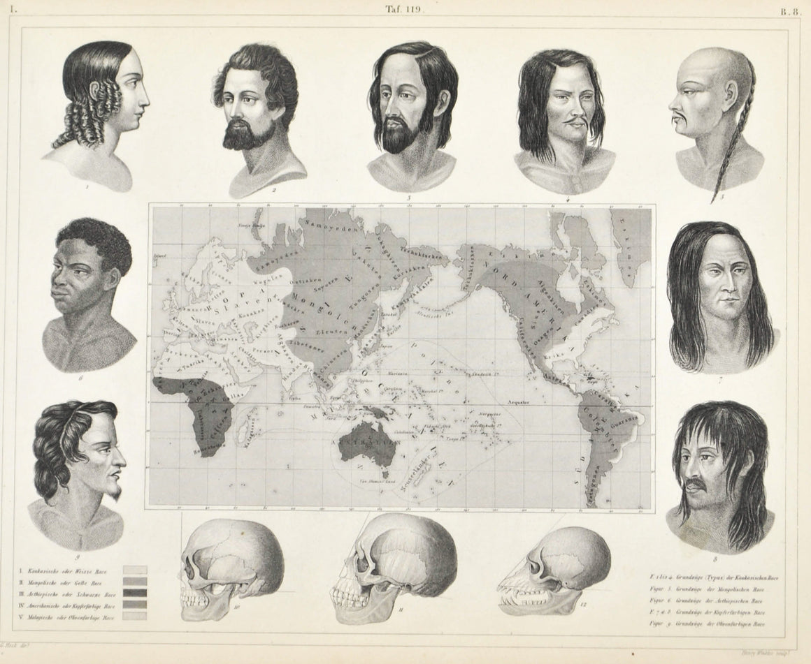 Varieties of Races of Mankind Antique Anatomy Print 1857