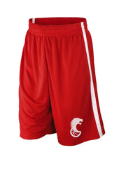Diensten aan huis Zedelgem Lions Training Shorts Men's Quick Dry