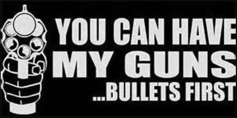 You Can Have My Guns Bullets First Sticker