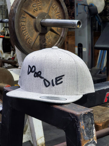 """Do or Die"" Heather Grey Snapback"