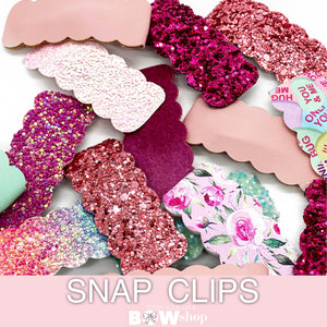 SNAP CLIPS