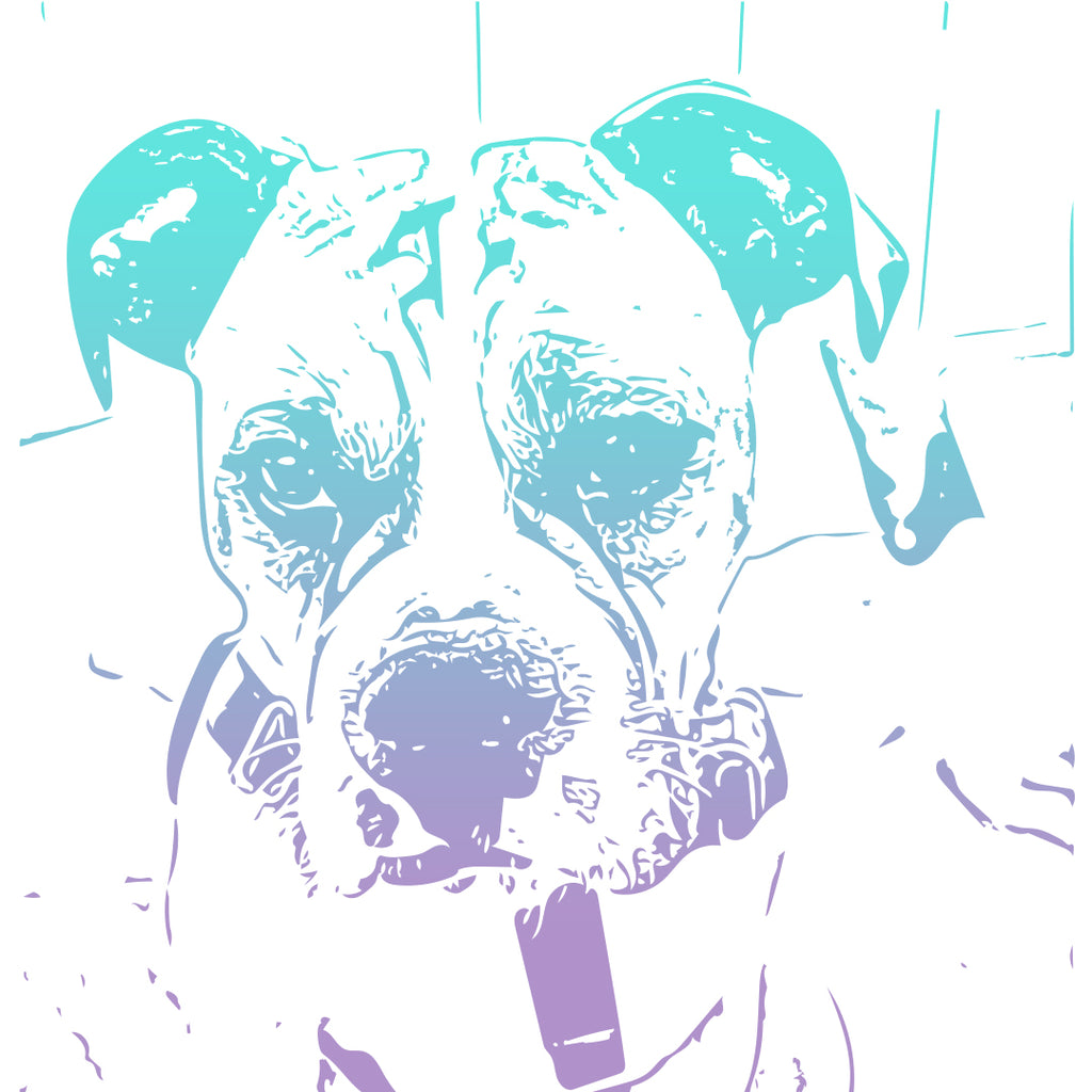 Digital Illustration of Your Dog (Donations Support Shelters in the US)