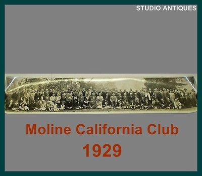 1929 Group PHOTOGRAPH Picture MOLINE CAL. CLUB Sycamore