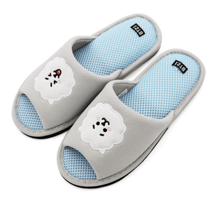 BT21 - Official Soft Mesh Indoor Slippers