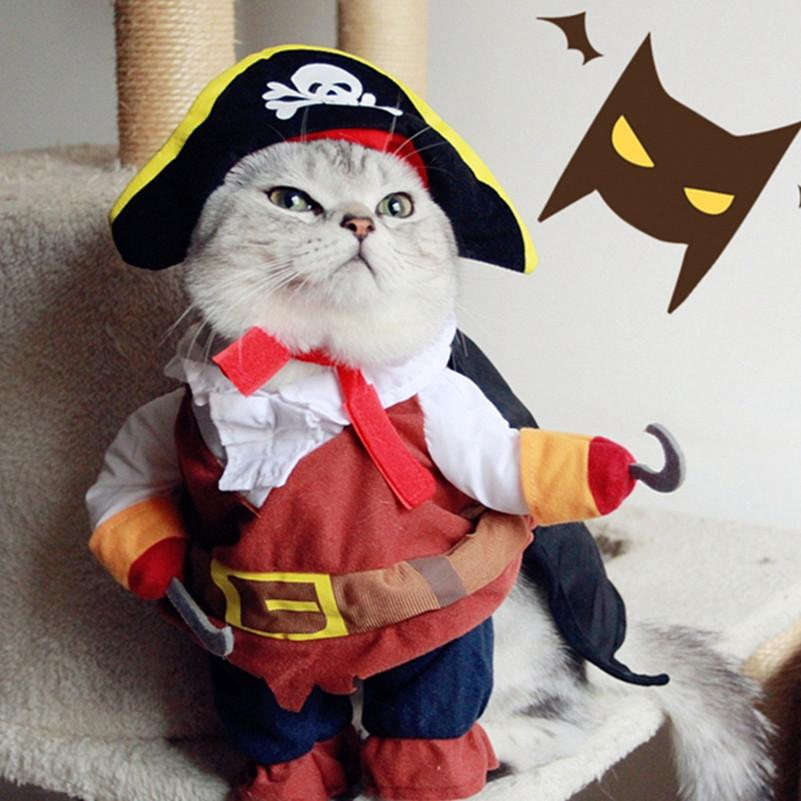 Funny Pet Cat Pirate Costume