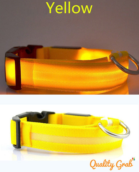 LED Dog Night Safety Collar. FREE GIVEAWAY
