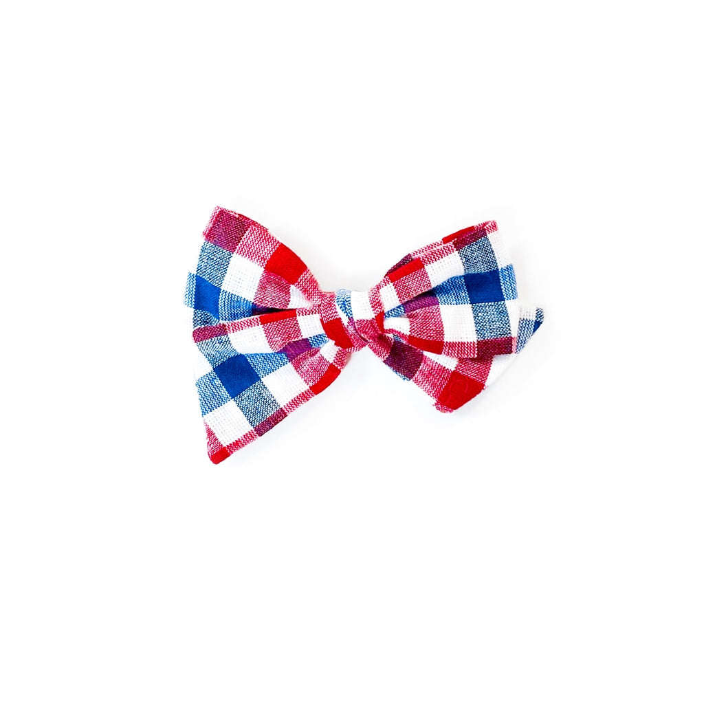 Red and Blue Gingham - Mini Twirl