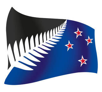 Silver Fern Design , Black Background - Flying Design 150mm by 167mm - Markit Graphics