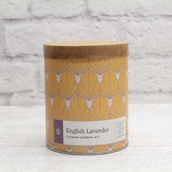 Kit de culture d'intérieur - English Lavender