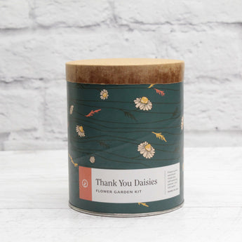 Kit de culture d'intérieur - Thank you Daisies