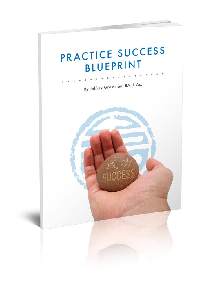 Practice Success Blueprint E-Book - Full Edition