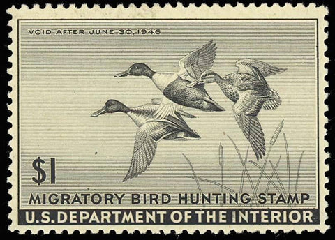 RW12, Mint DUCK STAMP - VF OG NH - P.O. FRESH!