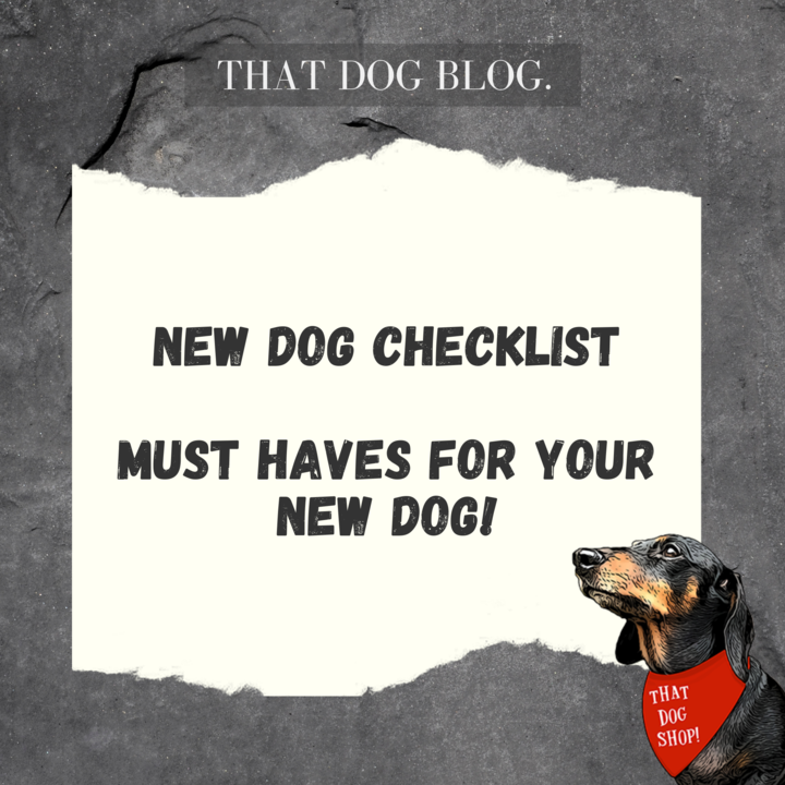 New Dog Checklist - Must haves for your new dog!