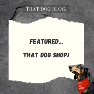 Featured - That Dog Shop!