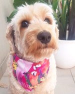 Dog Bandana - Parrots in Paradise-That Dog Shop