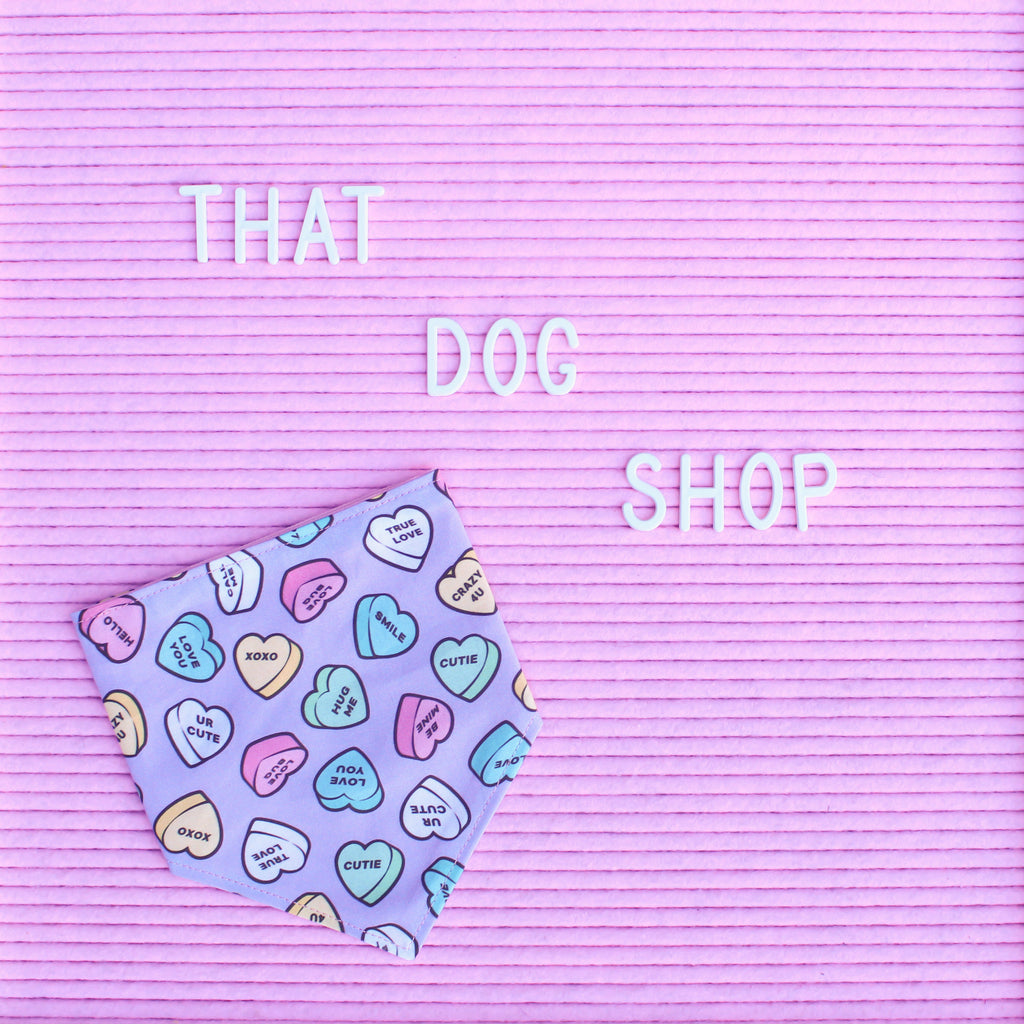 Dog Bandana - Valentine Candy Hearts