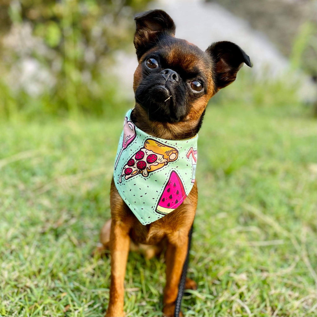 Dog Bandana - Treat Yourself Print
