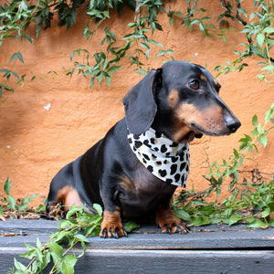 Dog Bandana - Leopard Print-That Dog Shop
