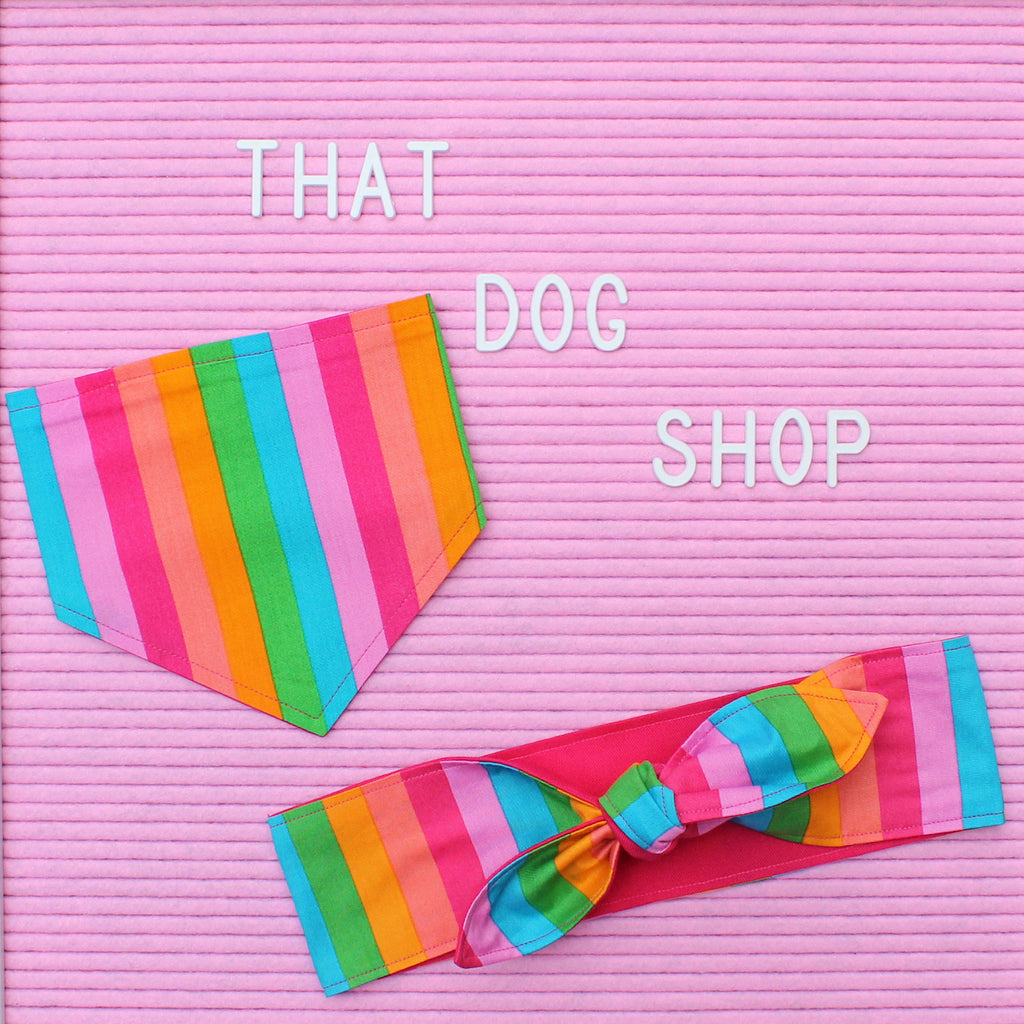 That Dog Shop My Dog & Me Headscarf & Bandana Set - Rainbow