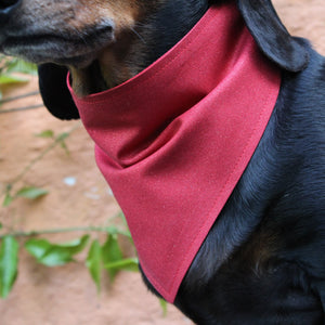 Dog Bandana - Ruby Slippers - LIMITED EDITION-That Dog Shop
