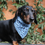 Dog Bandana - Leopard Print Chambray Denim