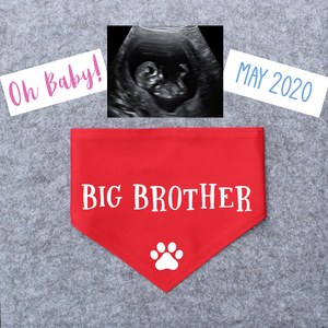 Pregnancy Announcement Dog Bandana Big Brother/Big Sister - Red-That Dog Shop