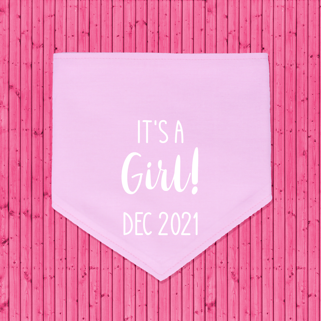 That Dog Shop Gender Reveal Announcement Dog Bandana It's a Girl! - Pink