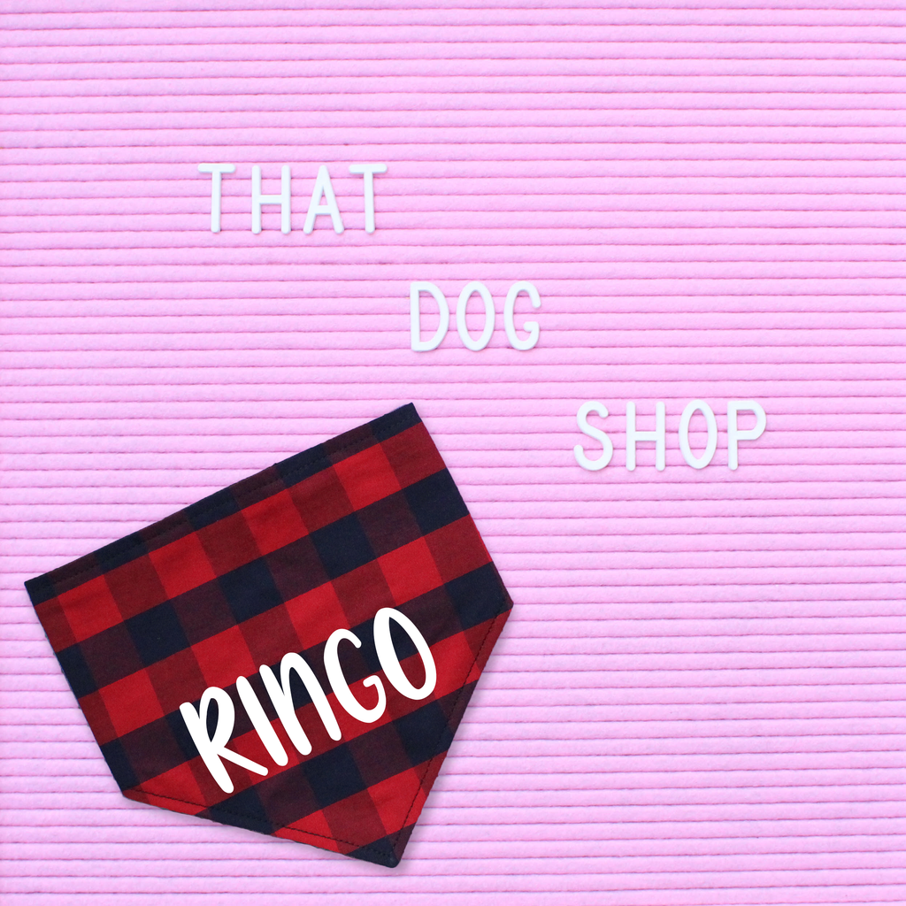 Dog Bandana - Red/Navy Check