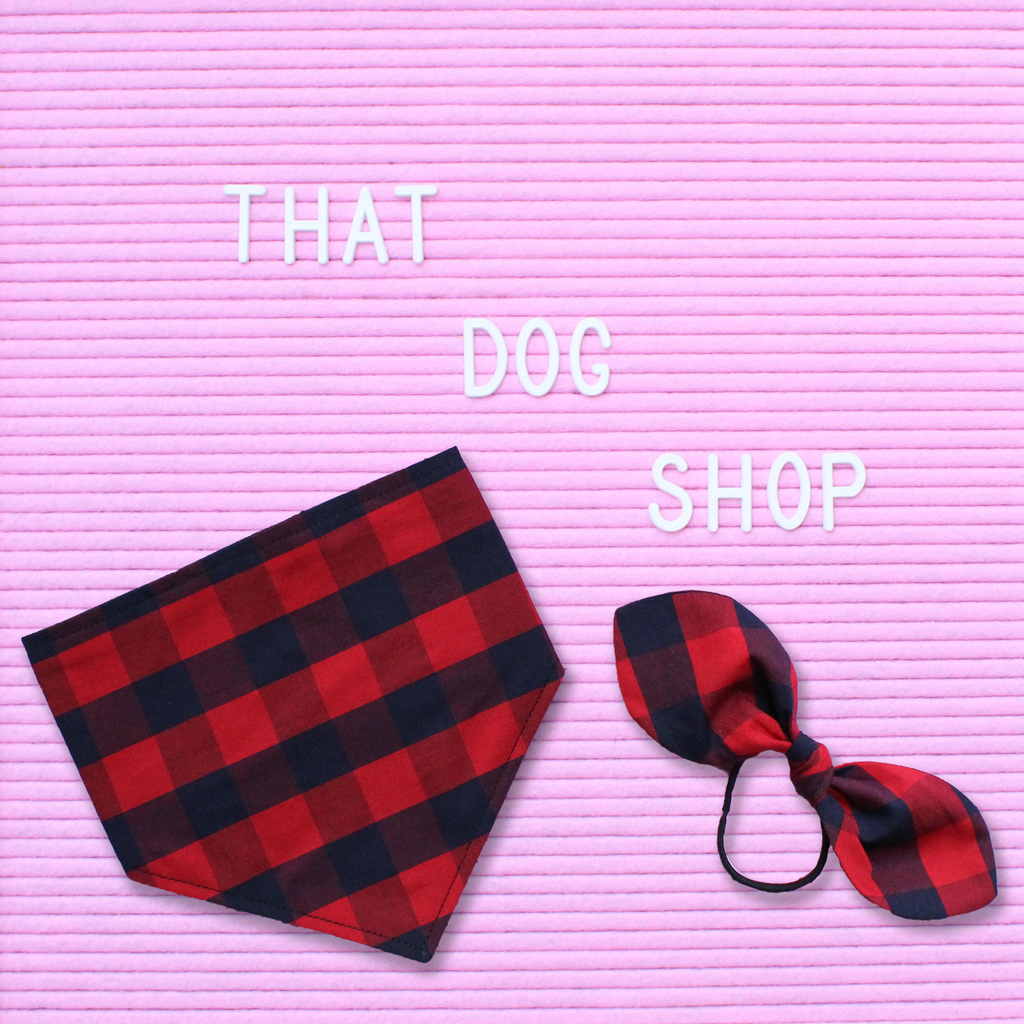 My Dog & Me Bow & Bandana Set - Red/Navy Check