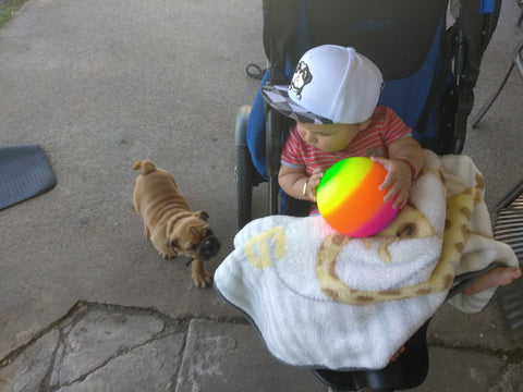 STEELO Infant & Toddler Bulldog hat