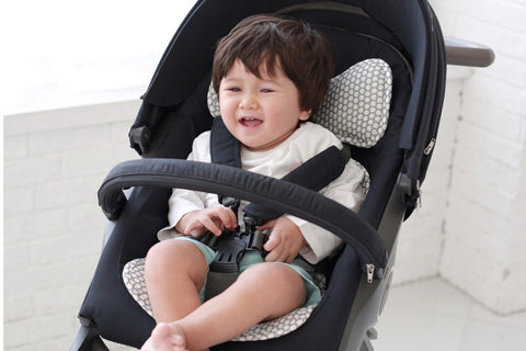 Agibaby Bebenuvo 3D Air Mesh Premium Cool Seat Liner- 22 unique designs