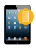 iPad Mini w/Retina Glass Replacement