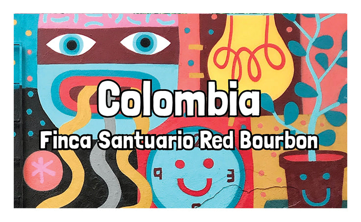Colombia - Finca Santaurio - Red bourbon - natural